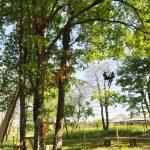 Parc à thème en Sud Gironde (33)